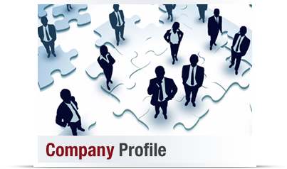 company-profile-sds-web-ltd-kataskevi-istoselidon-about-us