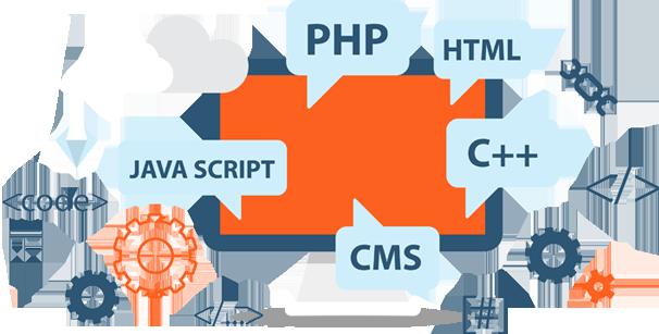 web-development-SDS-WEB-LTD